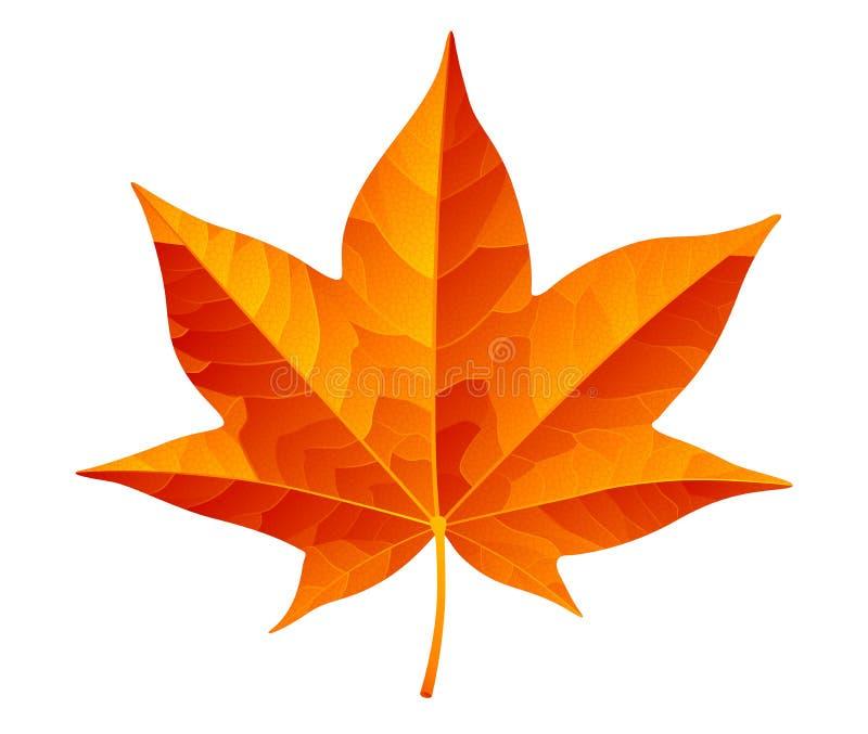 Abstract orange autumn leaf isolated on white background stock illustration