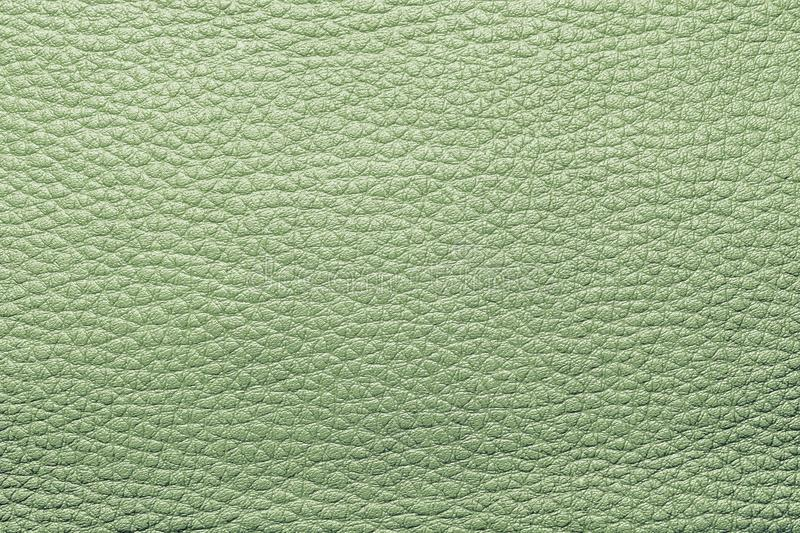 Abstract painted textures of skin green color. Abstract background from the painted texture of skin and leather fabric green color stock photos