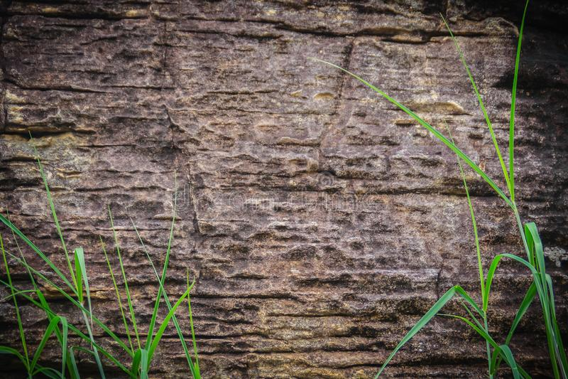 Abstract patterns of Sedimentary rocks that are formed by the deposition and subsequent cementation of that material at the Earth royalty free stock photo