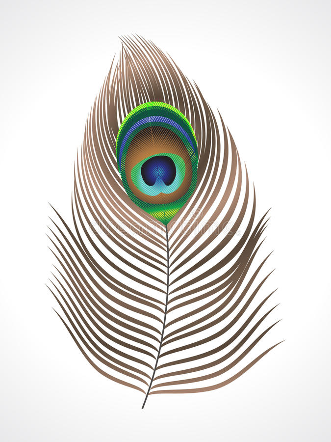 Abstract peacock feather royalty free illustration