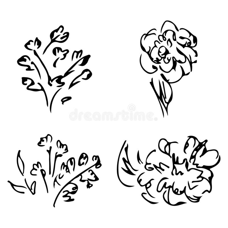 Abstract peonies and roses isolated on white background. Hand drawn floral collection. 4 floral graphic elements. Big vector set. Outline icons stock illustration