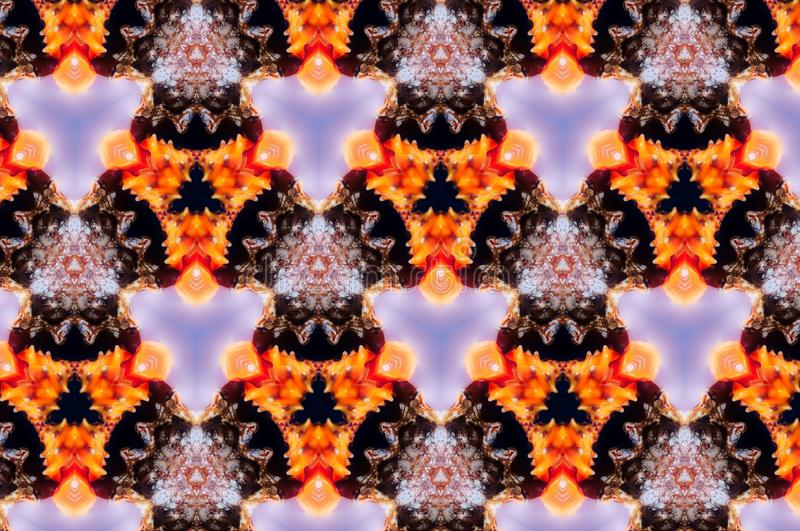 Abstract photo pattern sea shell. Orange and red. Black and blue. Yellow and white. Seamless photo background pattern. Sea shell. Abstract shapes vector illustration