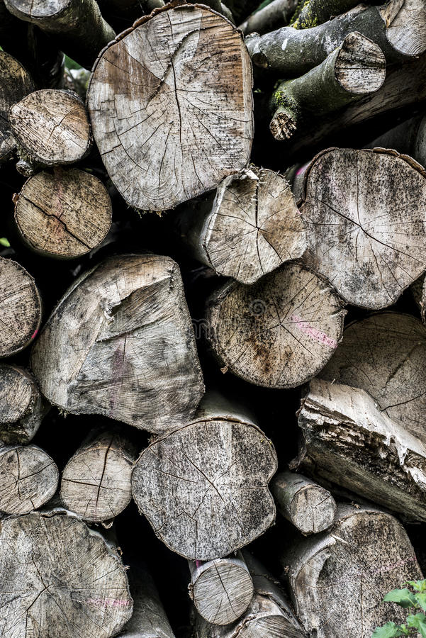 Abstract photo pile natural wood background dry chopped firewood logs ready for winter royalty free stock images