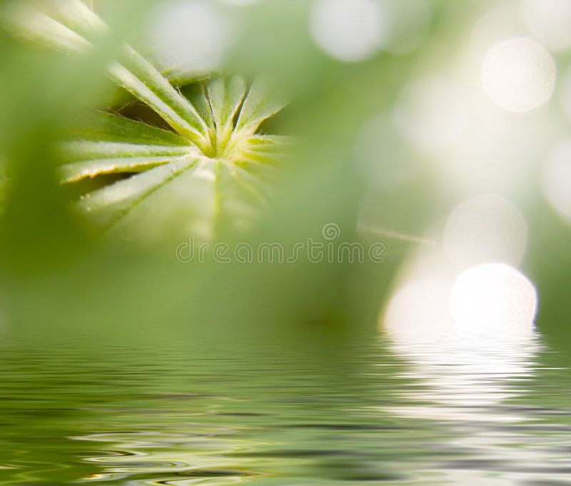 Abstract picture of a nature vector illustration