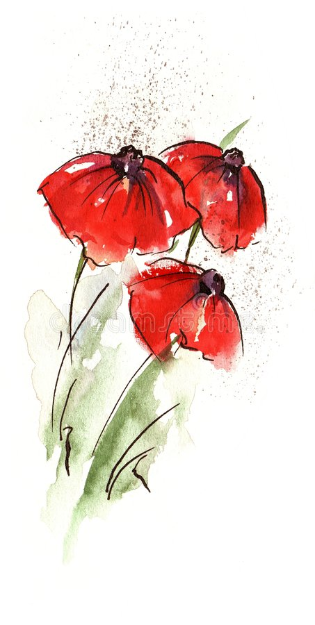 Abstract poppy. Handpainted floral watercolor illustration: Red poppie flower and green leave and grass isolated on white.Art is created and painted by royalty free illustration