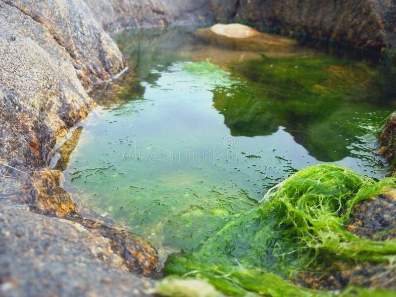 Abstract prachtig landschap van water stock fotografie