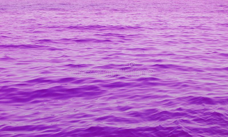 Abstract purple wave water. Background royalty free stock images