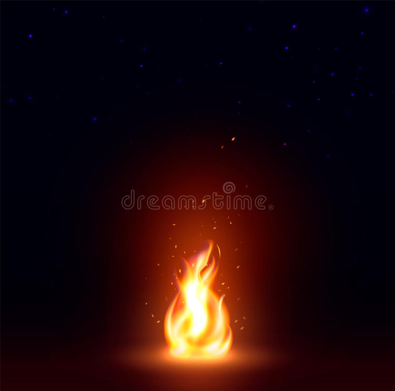 Abstract realistic fire flame image, bonfire on dark background vector illustration.  vector illustration