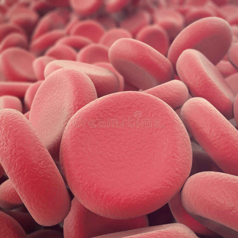 Abstract red blood cells, erythrocytes illustration, scientific, medical or microbiological background with depth of. Field. 3d illustration royalty free stock photography