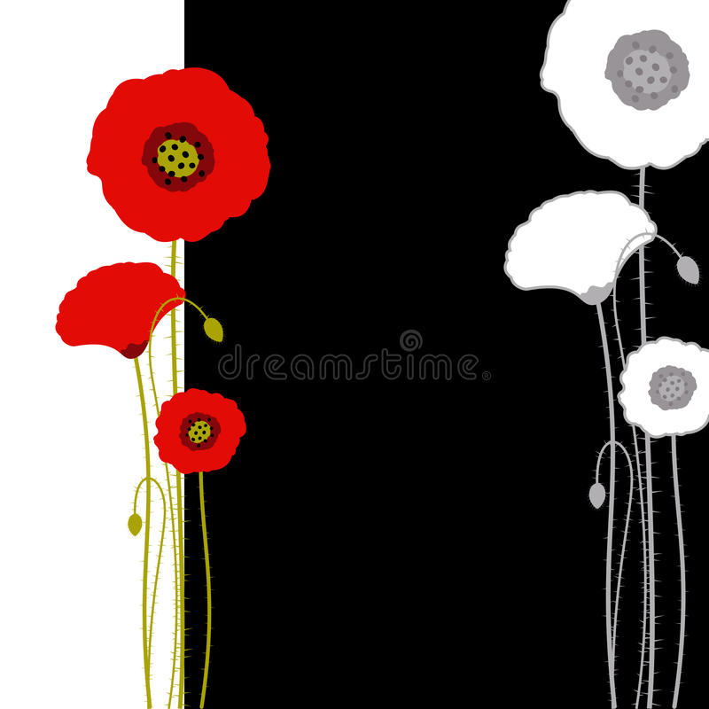 Abstract red poppy on black and white background stock illustration