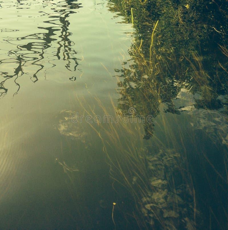 Abstract rivierwater stock afbeelding