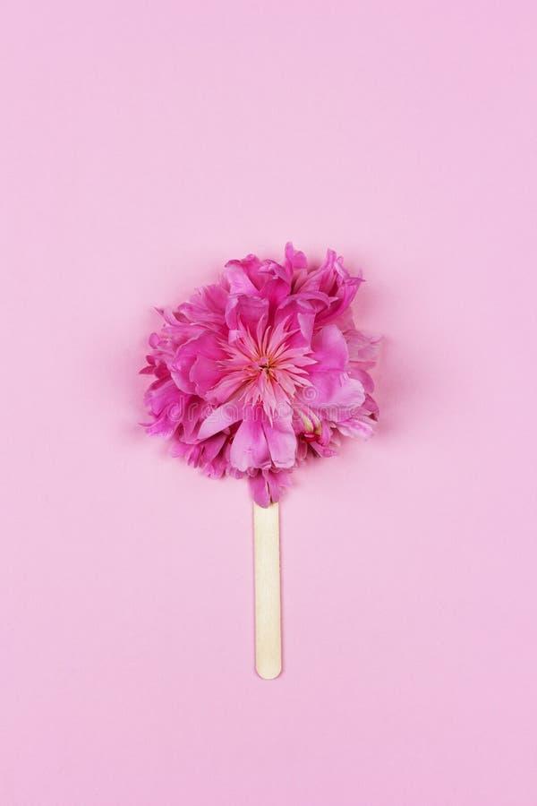 Abstract roomijs, roze pioenbloem op houten roomijsstok op roze hoogste mening als achtergrond royalty-vrije stock afbeeldingen