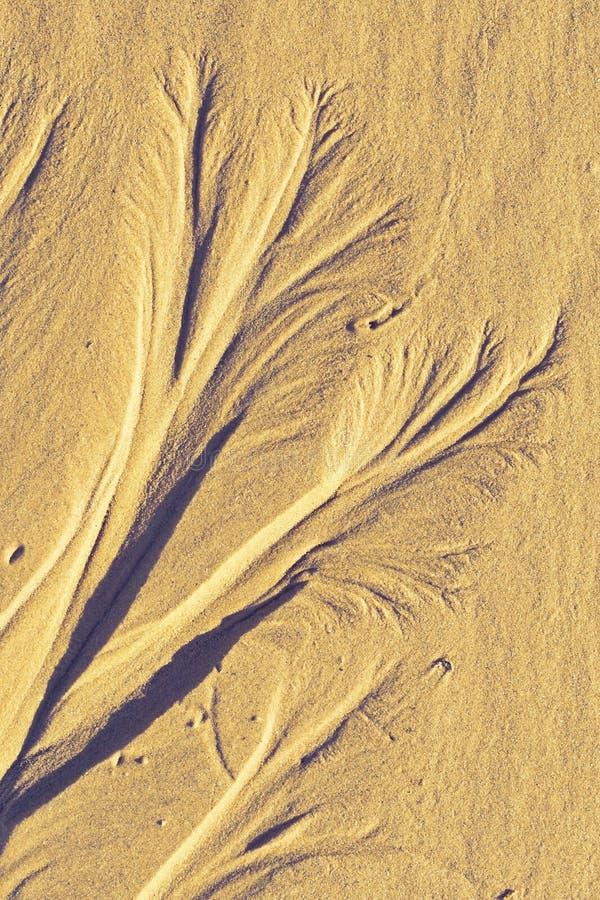 Abstract sand ornament. On the sea beach stock photos
