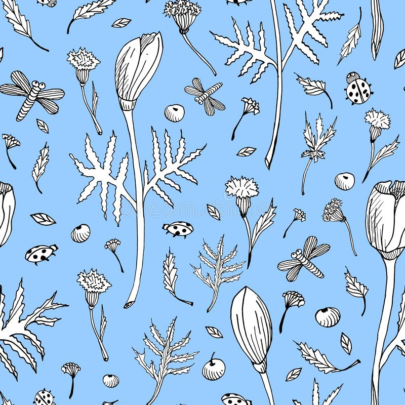 Abstract seamless floral pattern with tulips, leaves and herbs. Hand drawn black and white flowers on light blue. Background. Outline botanical illustration for stock illustration