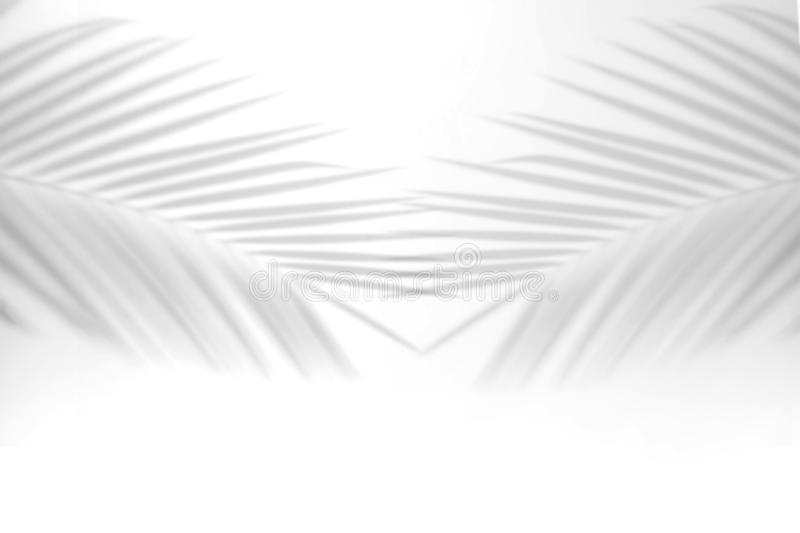 Abstract Shadow. blurred shadows palm leaves background. gray leaves that reflect concrete walls on a white wall surface for royalty free illustration