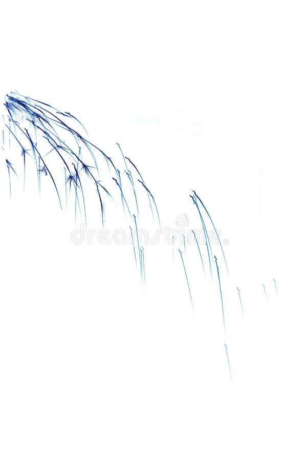 Download Abstract sparks stock image. Image of backgrounds, birthday - 4617645