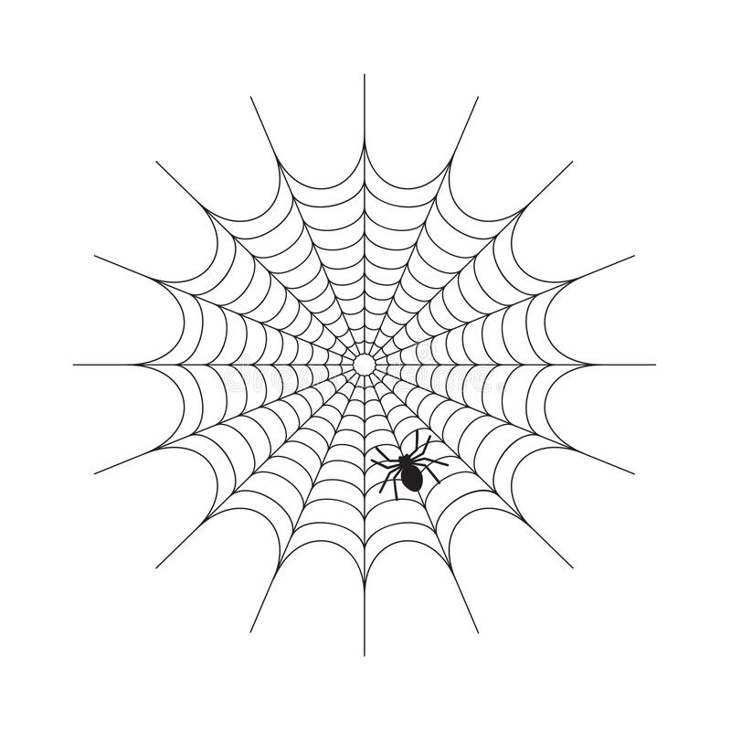 Abstract Spiderweb on white background stock image