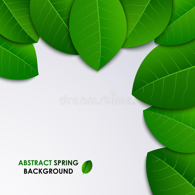Abstract spring fresh background with green leaves royalty free illustration