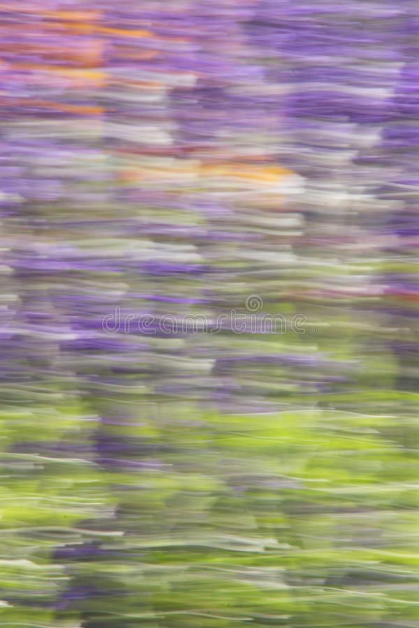 Abstract Summer Nature Background - Stock Photos. Abstract Summer Nature Blur Background - Green Purple Yellow Blurred Flowers Wallpaper stock photography