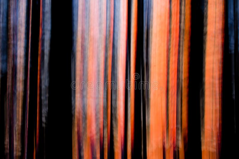 Abstract sunset through motion blurred trees. Abstract sunset skies of red, pink and orange with straight, motion-blurred trees in the foregroundntaken on stock photos