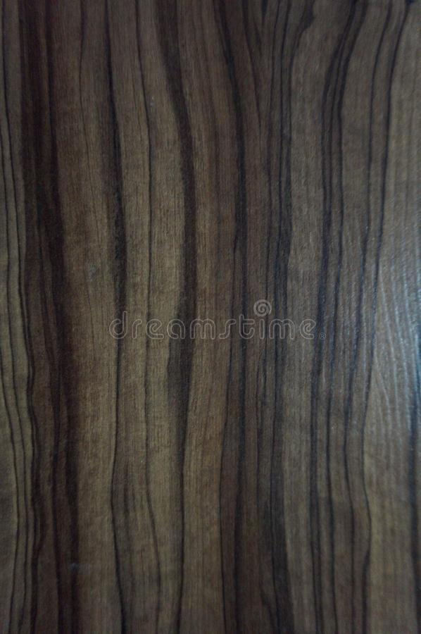 Abstract, texture in the wood of a tree. Macro royalty free stock photo