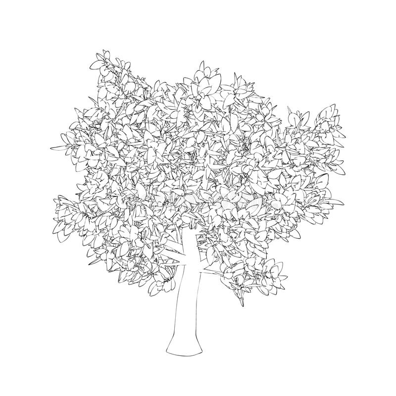 Abstract tree. Isolated on white background. Vector outline illustration. royalty free illustration