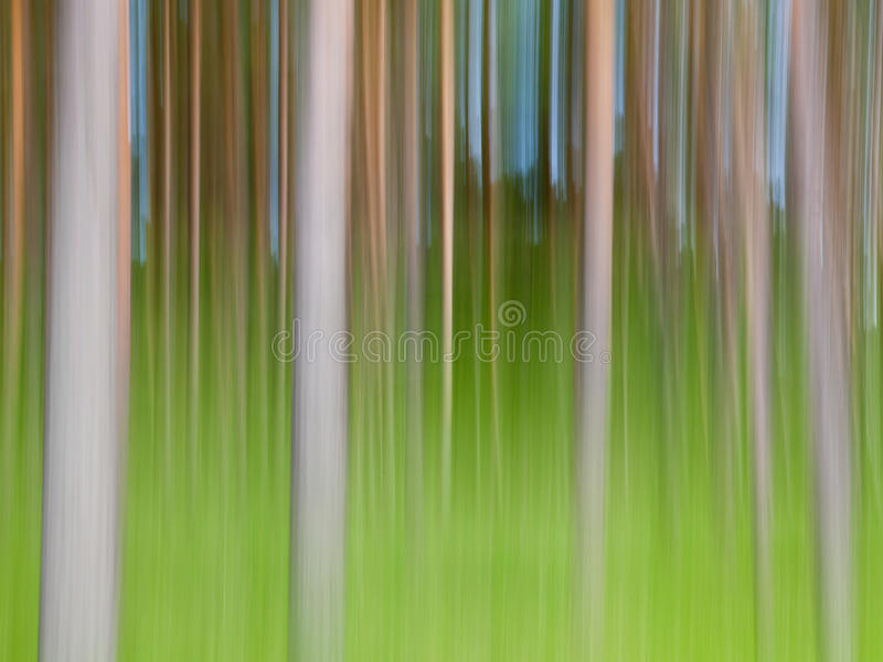 Abstract trees. Abstract background of motion blurred trees stock image