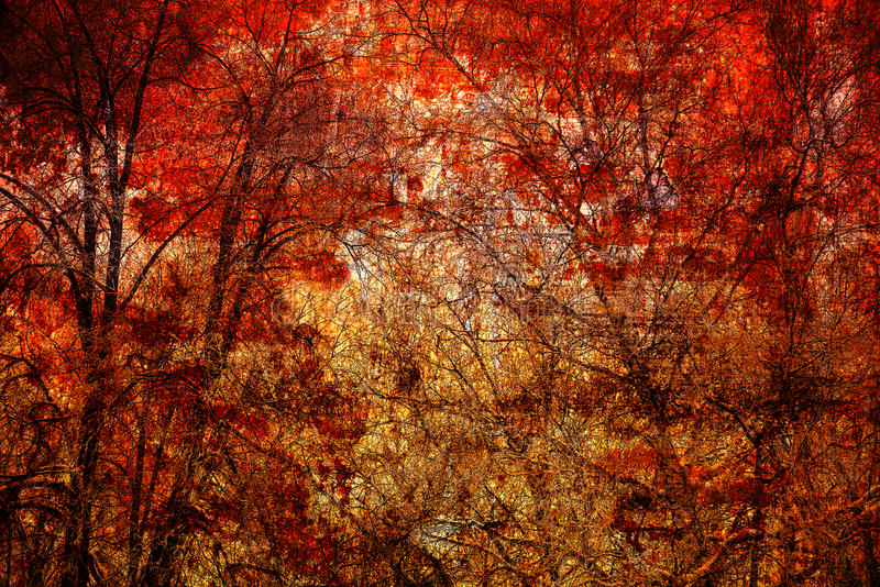 Abstract trees on a bright red background stock photos