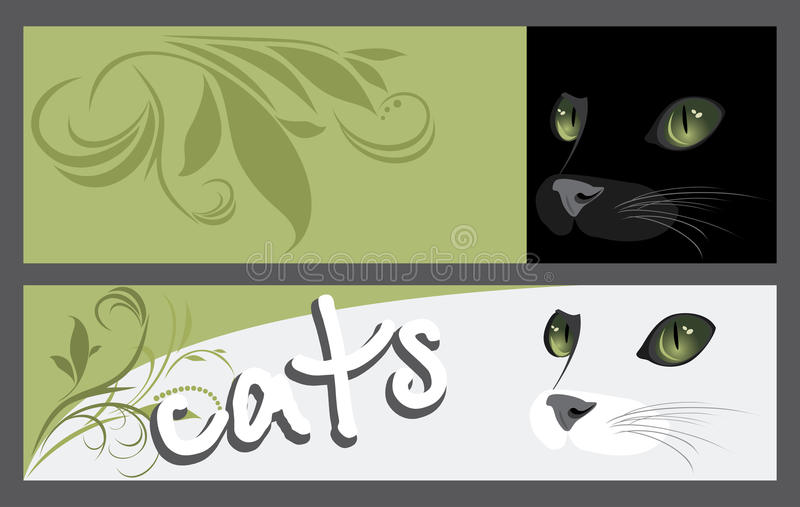 Abstract two banners with muzzle of cats vector illustration