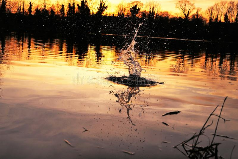 Abstract water splash at sunset stock photography