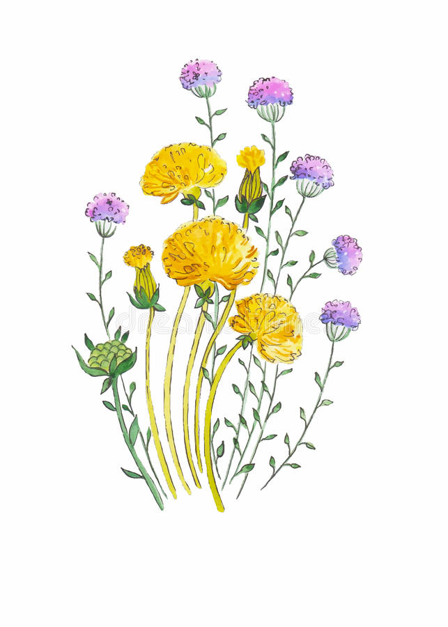 Abstract watercolor art hand drawn background with yellow dandelions . Vector Illustration. stock image
