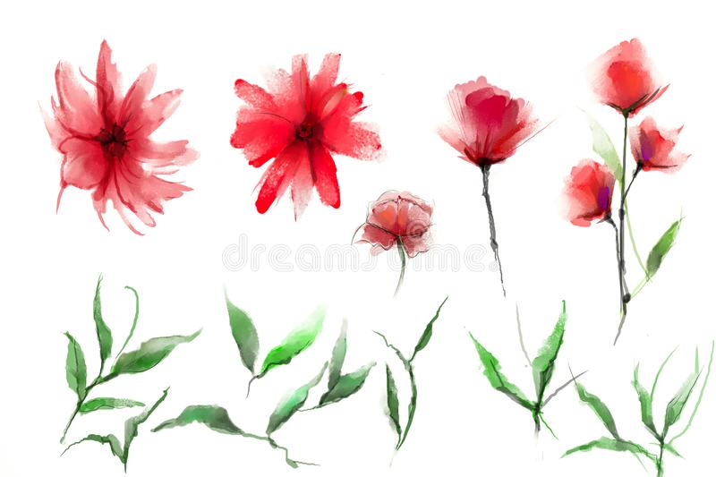 Abstract  watercolor painting flower and leaf. Illustration isolated of spring, summer flowers paint design over white background stock illustration