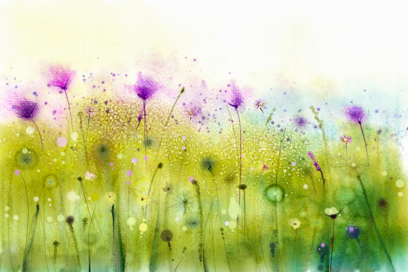 Abstract watercolor painting purple cosmos flowers and white wildflower stock illustration