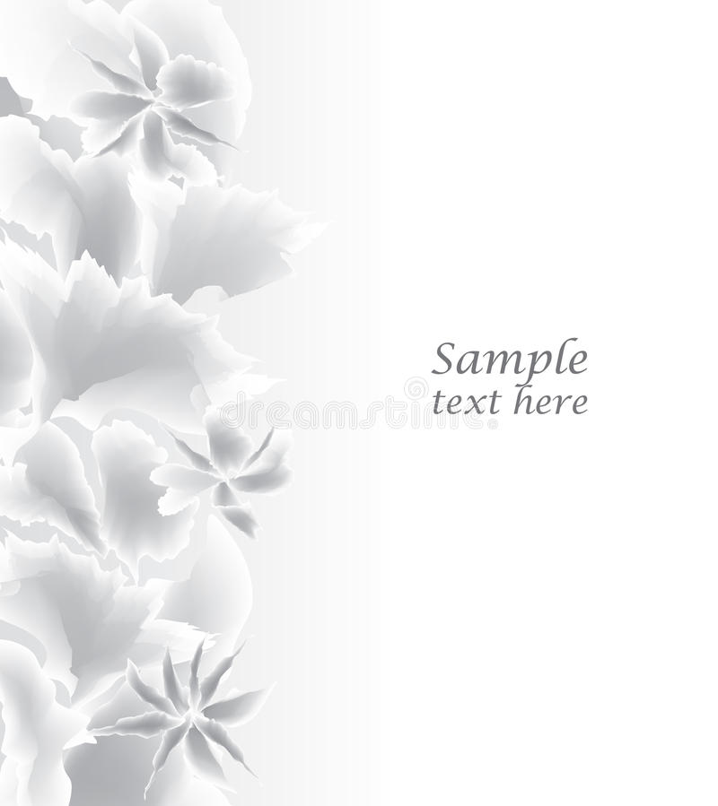 Abstract White Background. Floral border. vector illustration