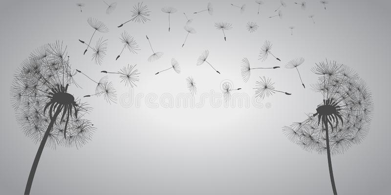 Abstract white dandelions, dandelion with flying seeds - vector. Abstract white dandelions, dandelion with flying seeds - stock vector stock illustration