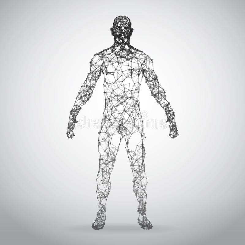 Abstract Wire frame human body. Polygonal 3d model on white background stock photography