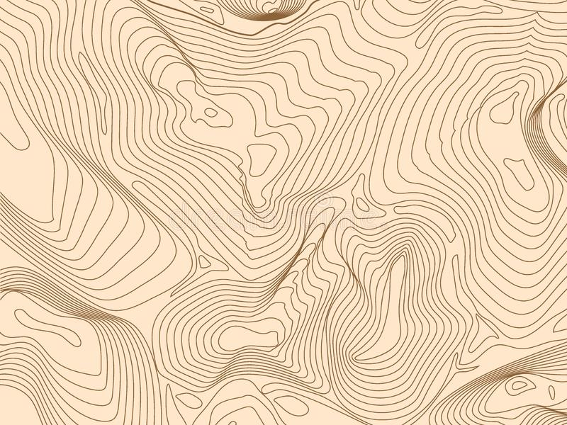 Abstract wireframe background topography contour. Vector illustration.  vector illustration