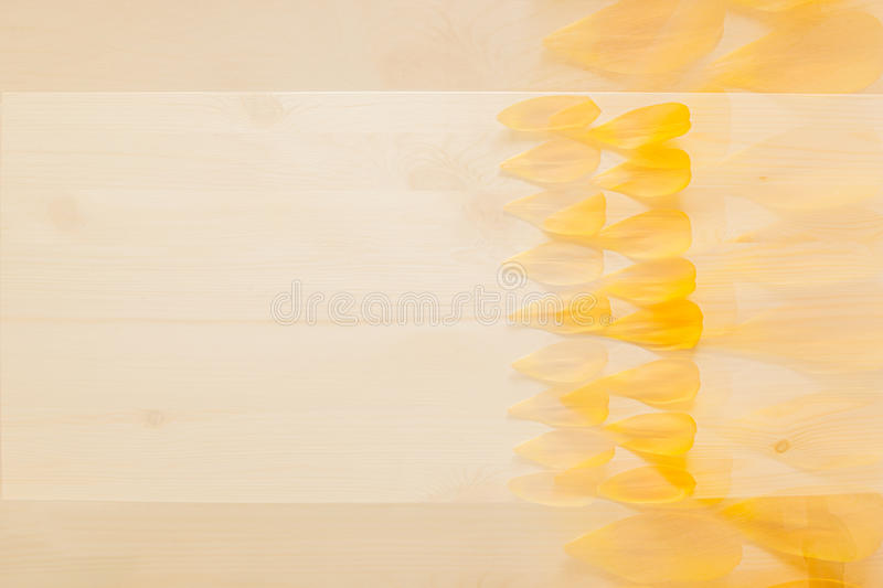 Abstract wood background with yellow flower petals. Background. Pattern. stock images