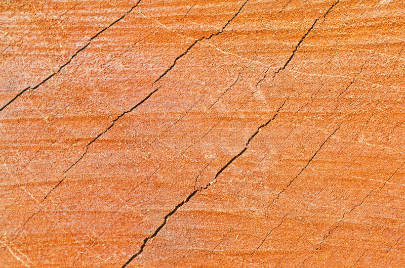 Download Abstract wood texture stock photo. Image of color, decor - 25407160
