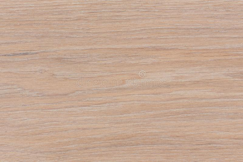 Abstract wood texture with focus on the wood`s grain. High resolution photo royalty free stock photo