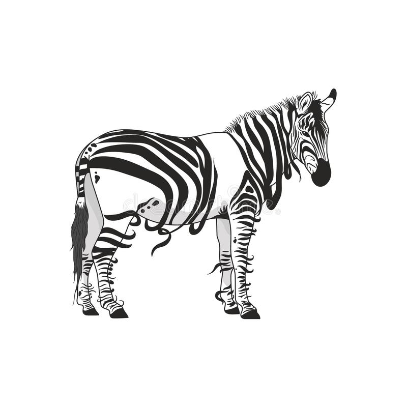 Abstract zebra  design. Africa, animals, art, black, card, cartoon, cover, creative, dark, different, drawn, drawing, elements, embroidery, fabric, graphic vector illustration