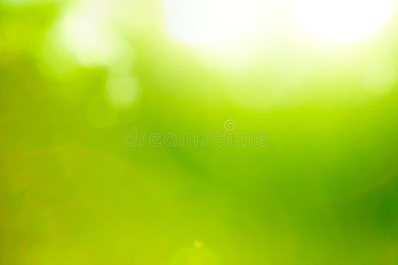 Abstracte aard groene achtergrond. royalty-vrije stock afbeeldingen