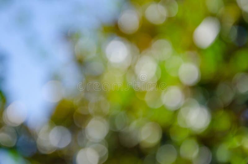 Abstracte aard kleurrijke achtergrond in bokehstijl stock fotografie