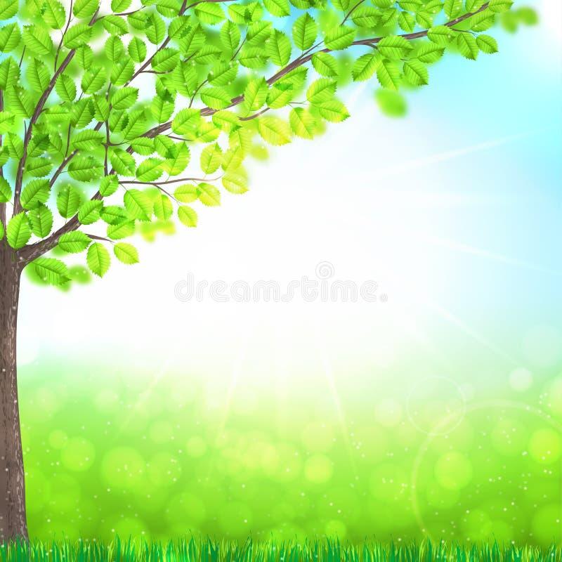 Abstracte aardachtergrond met boom, gras en zon royalty-vrije illustratie