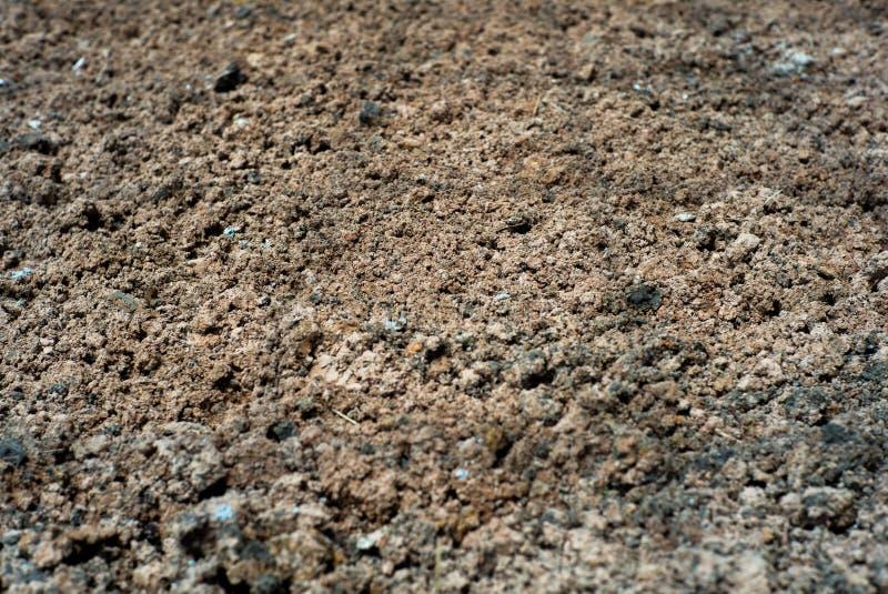 Abstracte achtergrond en textuur van lateritic grond met de elft royalty-vrije stock foto's