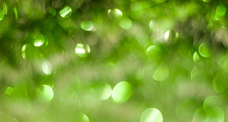 Abstracte achtergrond met groen Kerstmisklatergoud, stock foto's