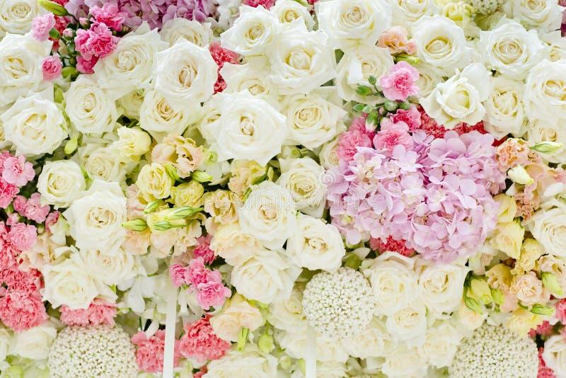Abstracte Achtergrond van Bloemen Close-up royalty-vrije stock afbeeldingen