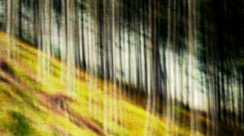 Abstracte achtergrond van bomen stock foto