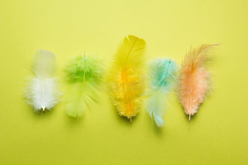Abstracte achtergrond van reeks multi-colored mooie en zachte veren van een vogel op geel royalty-vrije stock foto