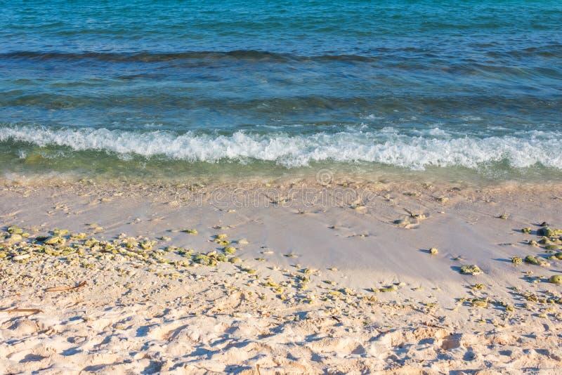 Abstracte achtergrond van turkooise blauwe oceaangolf op een zandig strand royalty-vrije stock foto